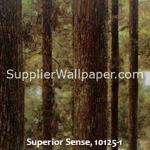 Superior Sense, 10125-1
