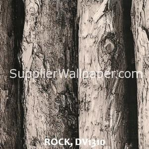 ROCK, DV1310