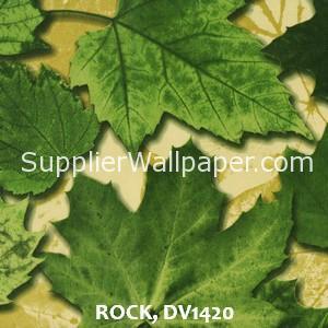 ROCK, DV1420