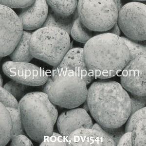 ROCK, DV1541