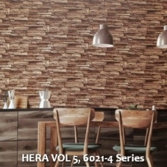 HERA-VOL-5-6021-4-Series
