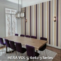 HERA-VOL-5-6062-3-Series