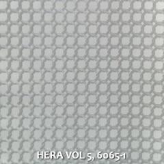HERA-VOL-5-6065-1