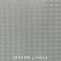 HERA-VOL-5-6065-3