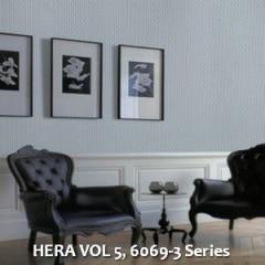 HERA-VOL-5-6069-3-Series
