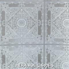 HERA-VOL-5-6071-3