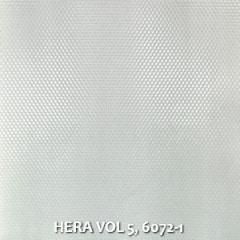 HERA-VOL-5-6072-1