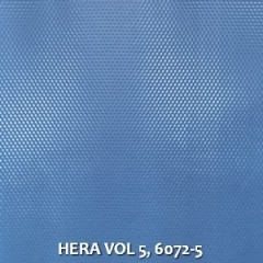 HERA-VOL-5-6072-5