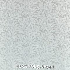 HERA-VOL-5-6074-1