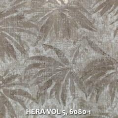HERA-VOL-5-6080-1