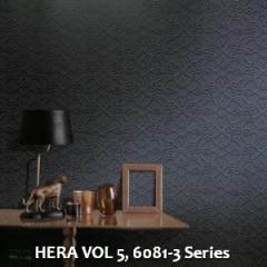 HERA-VOL-5-6081-3-Series