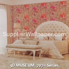 3D MUSEUM, 707-1 Series