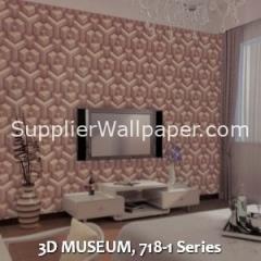 3D MUSEUM, 718-1 Series