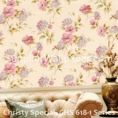 Christy Special, CHS 618-1 Series