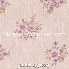 Codelia, 3102-3
