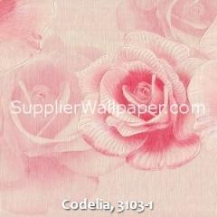 Codelia, 3103-1