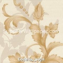 Codelia, 3107-1
