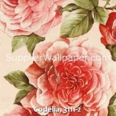 Codelia, 3111-2