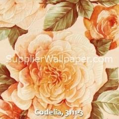 Codelia, 3111-3