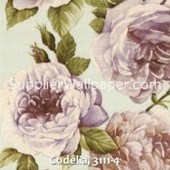 Codelia, 3111-4