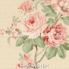 Codelia, 3113-1