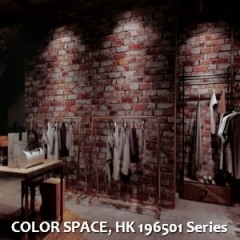 COLOR-SPACE-HK-196501-Series