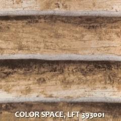 COLOR-SPACE-LFT-393001
