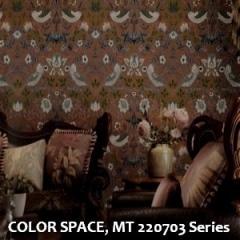 COLOR-SPACE-MT-220703-Series