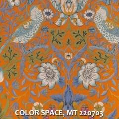 COLOR-SPACE-MT-220703