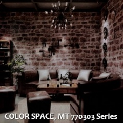 COLOR-SPACE-MT-770303-Series