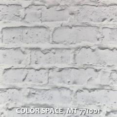 COLOR-SPACE-MT-771001