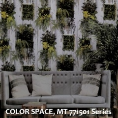 COLOR-SPACE-MT-771501-Series