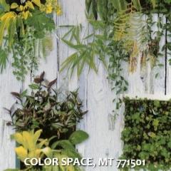 COLOR-SPACE-MT-771501