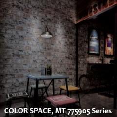 COLOR-SPACE-MT-775905-Series