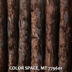 COLOR-SPACE-MT-779601