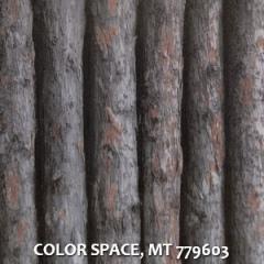 COLOR-SPACE-MT-779603