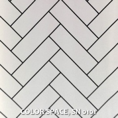 COLOR-SPACE-SN-0101