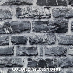 COLOR-SPACE-SN-0401