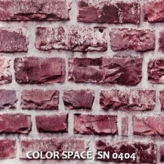 COLOR-SPACE-SN-0404
