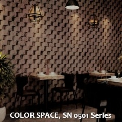 COLOR-SPACE-SN-0501-Series