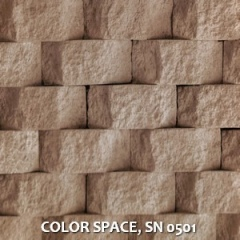 COLOR-SPACE-SN-0501