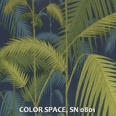 COLOR-SPACE-SN-0801
