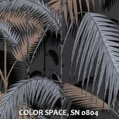 COLOR-SPACE-SN-0804