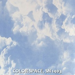 COLOR-SPACE-SN-1403
