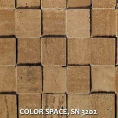 COLOR-SPACE-SN-3202