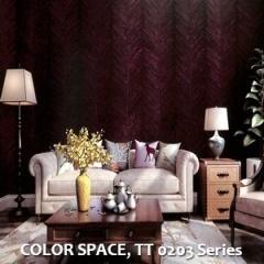COLOR-SPACE-TT-0203-Series