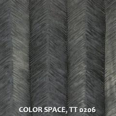 COLOR-SPACE-TT-0206