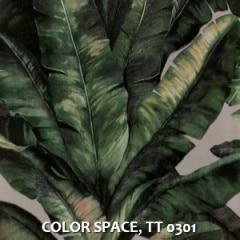 COLOR-SPACE-TT-0301