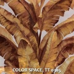 COLOR-SPACE-TT-0305
