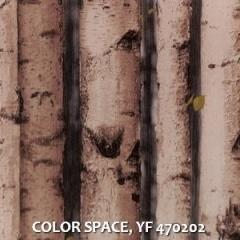 COLOR-SPACE-YF-470202